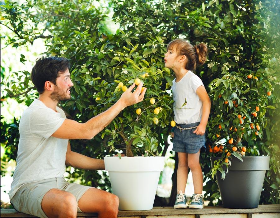 Macetas para plantar tu huerto