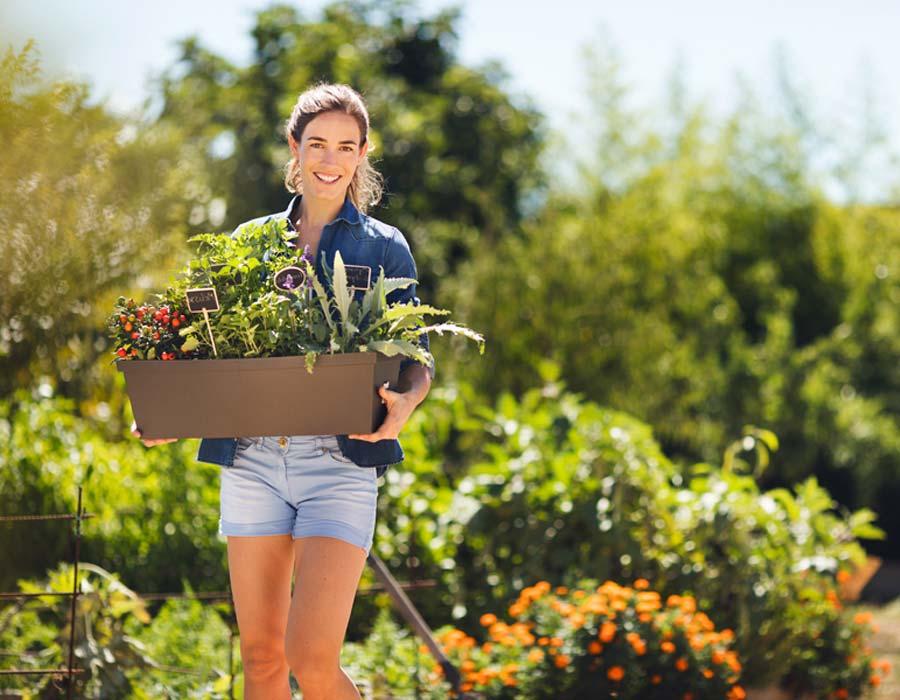 Jardineras para plantar tu huerto